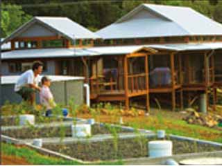 Newly built wetland on-site sewage