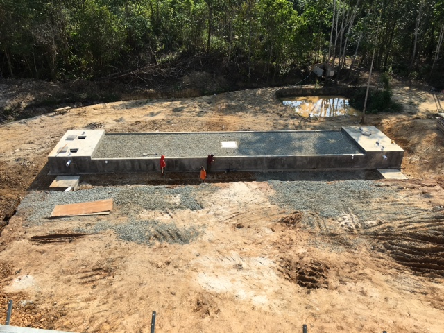constructed wetland for wastewater treatment